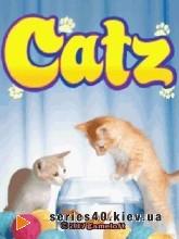 Catz  | 240*320