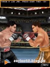 Fight Night Round 3   240*320
