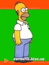 Simpsons | 240*320