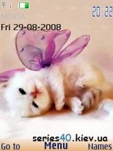 Kittens | 240 *320