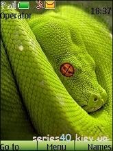 Snake by _DK_SAN_ | 240*320