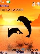 Дельфины | 240*320