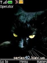Black Cat by _DK_SAN_ | 240*320