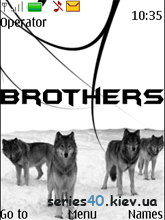 Wolf Brothers by Vice Wolf | 240*320