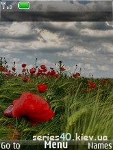 Field by Му)(а   240*320