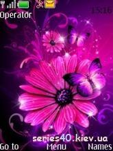 Flowers by TrinityBlood   240*320