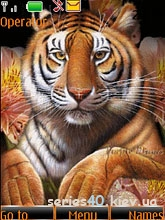 tiger_animated_by_xailin | 240*320