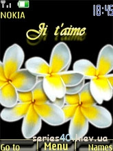 magnolia-by-xailin   240*320