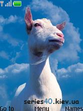 Goat By Sinedd | 240*320