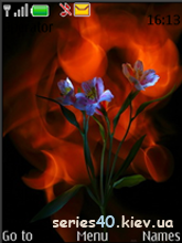 Burning Flowers by slaughter123 | 240*320