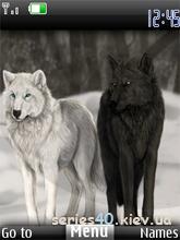 Wolf by KPuTuK | 240*320