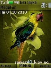 Попугай by kitaez | 240*320