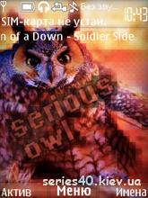 Serious Owl | 240*320