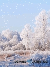 Winter logoes by kolьka_dinho | 240*320