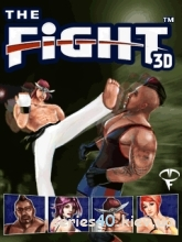 The Fight 3D | 240*320