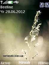Grass by koshac | 240*320