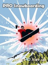 Pro snowboard | 240*320