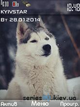 Winter theme by Yanexe | 240*320